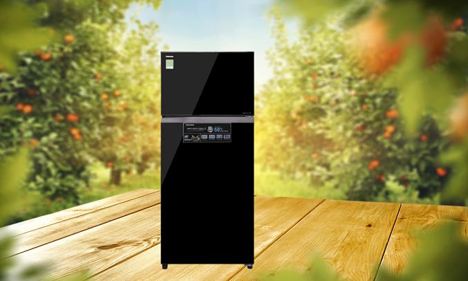 Tủ lạnh Toshiba GR-AG46VPDZ (XK1)- Kháng khuẩn, khử mùi