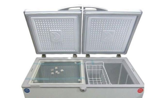 Tủ đông Sanaky VH-6699W1 2 ngăn