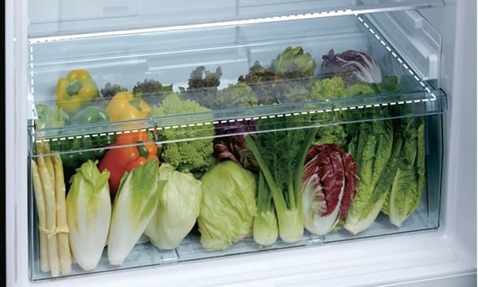 Tủ lạnh Toshiba GR-AG36VUBZ (XK1) - Ngăn rau quả rộng