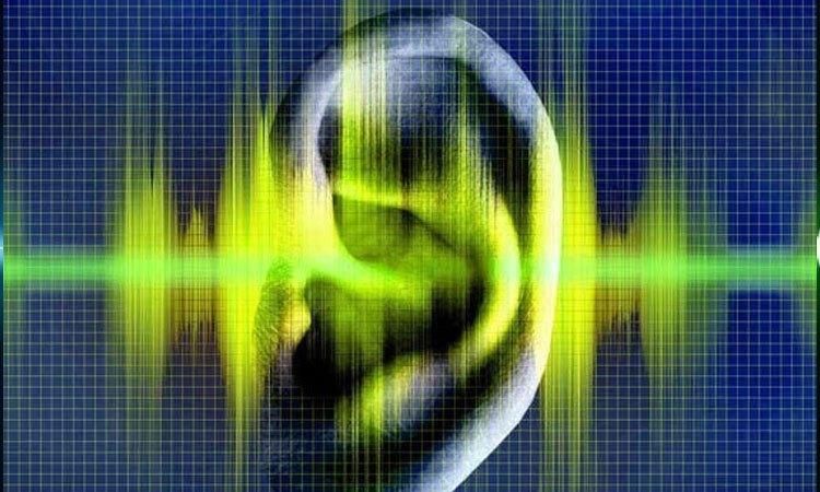 Amply Boston Audio PA 8000N có bộ chỉnh âm chuyên nghiệp, đem lại âm thanh phù hợp với nhu cầu người sử dụng