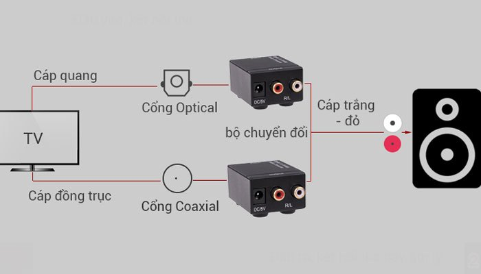 Cách kết nối loa với tivi bằng bộ chuyển đổi