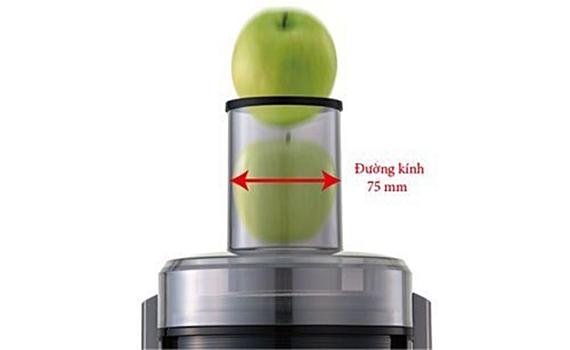 Máy ép trái cây Panasonic MJ-DJ01SRA ống tiếp trái cây lớn