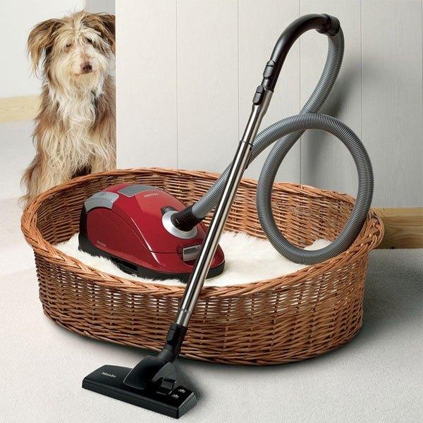 Chọn máy hút bụi có công suất mạnh để dễ làm sạch lông thú