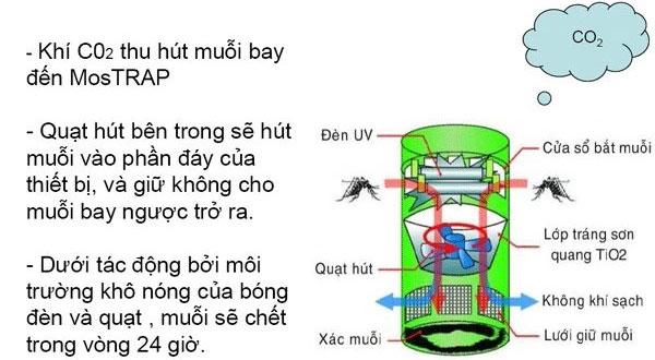 Đèn bắt muỗi hoạt động khá đơn giản nhưng hiệu quả mang lại sẽ khiến bạn bất ngờ
