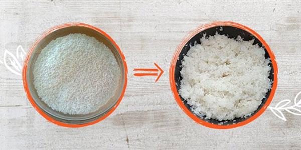 Gạo nếp cần nấu trong thời gian vừa đủ để hạt gạo tơi xốp