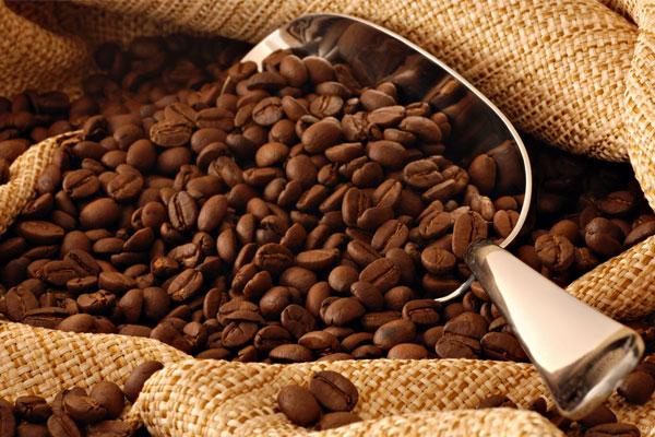 Hạt cà phê có cấu trúc rắn nên dễ làm mòn lưỡi dao của máy xay sinh tố