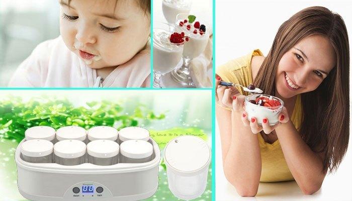 Máy làm sữa chua sẽ giúp bạn tự làm sữa chua hiệu quả