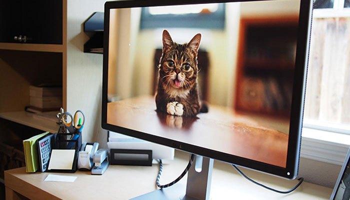 Màn hình máy tính dùng đèn nền LED cho hình ảnh chân thật