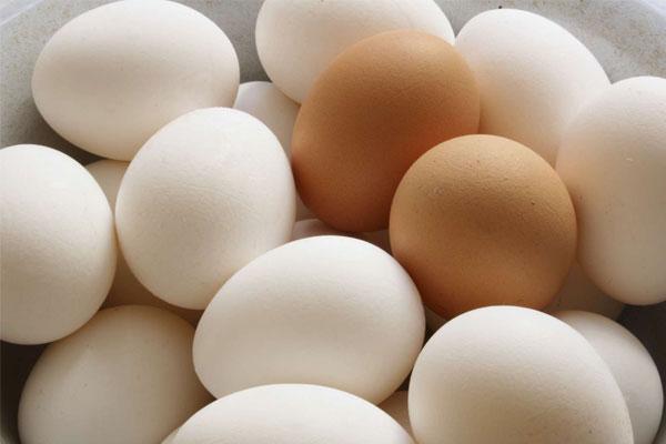 Trứng còn nguyên vỏ tuyệt đối không được cho vào lò vi sóng