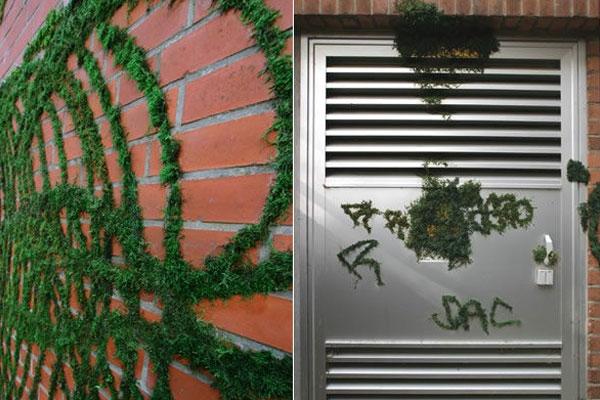 Hãy mở trổ tài để bức tường nhà bạn khiến ai cũng phải trầm trồ khi nhìn vào.