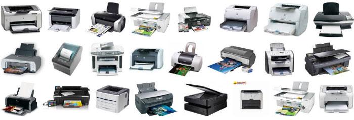 Thị trường hiện nay có nhiều loại máy in