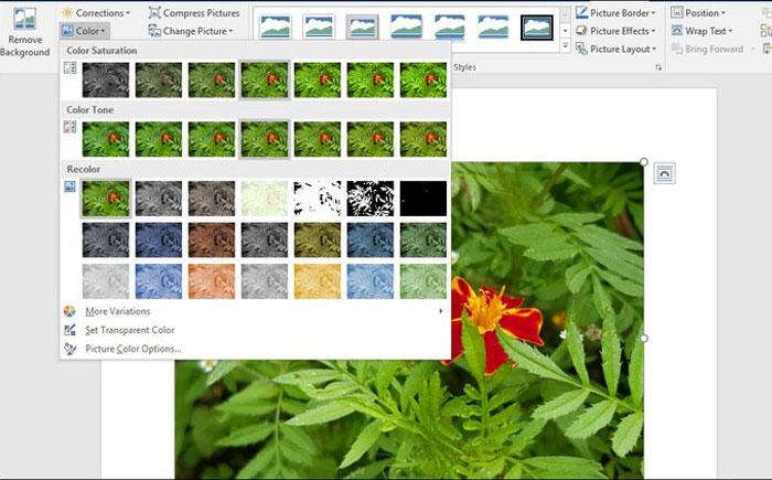 Nhiều tùy chọn thay đổi màu ảnh bạn có thể tìm thấy trên Microsoft Word