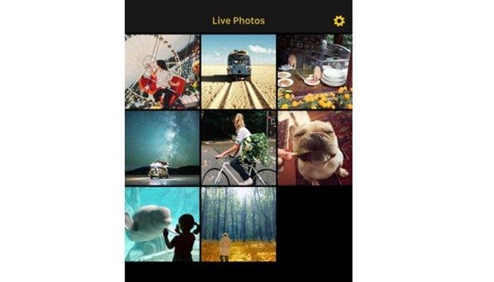 Ứng dụng tạo GIF trên điện thoại iPhone