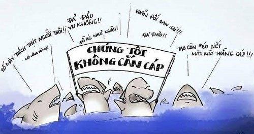 Mỗi lần đứt cáp là đổ thừa dòng họ cá Mập nhà tui.