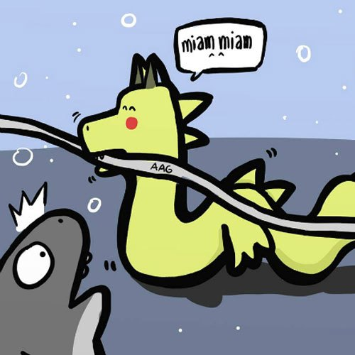 Rồng à, em không nên cắn đứt cáp trước anh mập