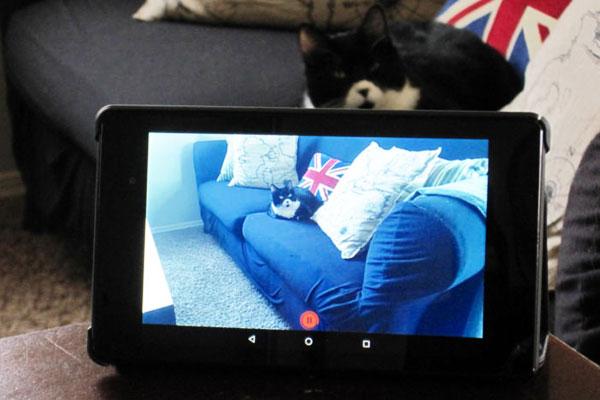 Bạn có thể quan sát hoạt động của con cái một cách bí mật nhờ chiếc tablet