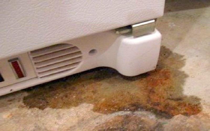"""Bị đọng nước là một trong những biểu hiện bị """"bệnh"""" của tủ lạnh"""