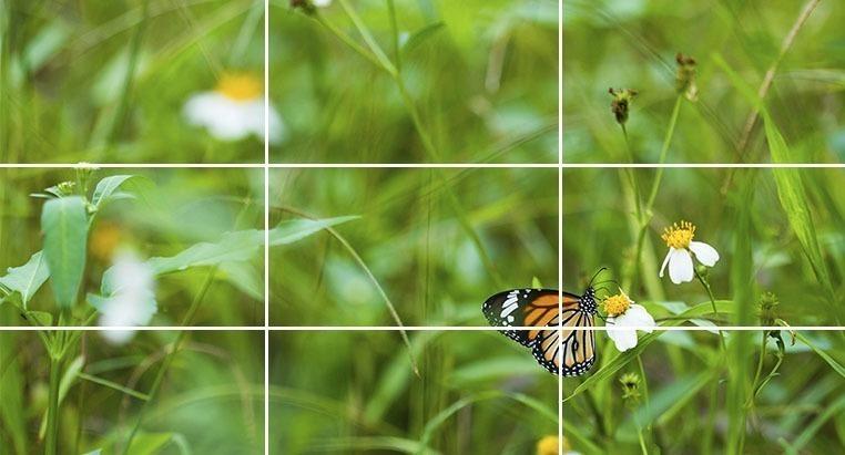 Sử dụng các công cụ chỉnh sửa ảnh để có một bức ảnh hoàn hảo hơn