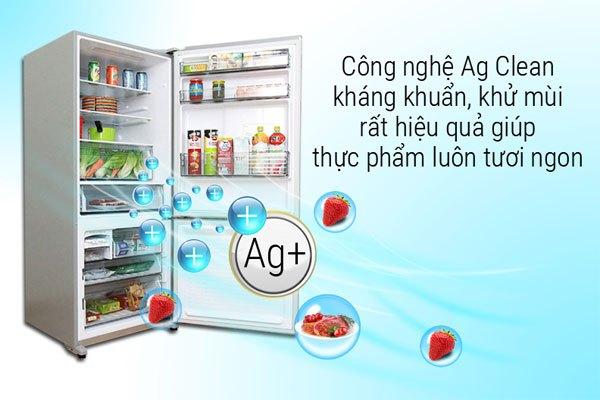 Ion bạc từ bộ lọc Ag Clean của tủ lạnh Panasonic diệt trừ tới 99.9% vi khuẩn