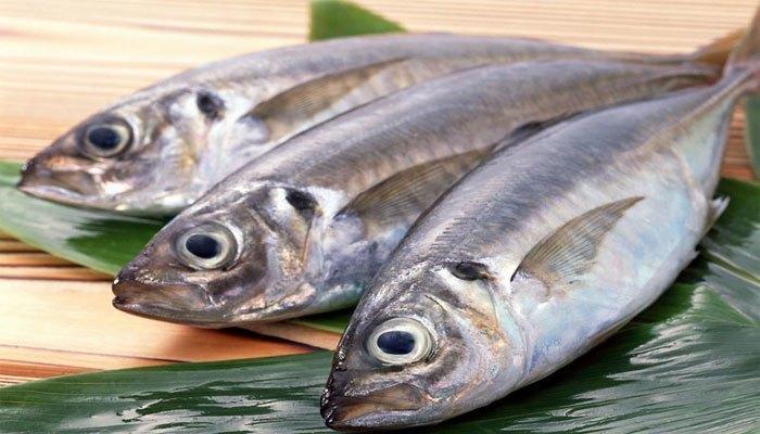 Cá tươi mang đến những món ăn bổ dưỡng cho gia đình bạn