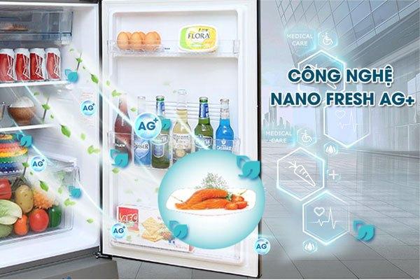 Môi trường sinh sôi của vi khuẩn, nấm mốc trong tủ lạnh Aqua sẽ bị tiêu diệt với Nano Fresh Ag+