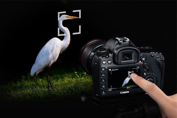 Nhờ 5D Mark IV, Canon xứng đáng là máy ảnh xuất sắc nhất 2016