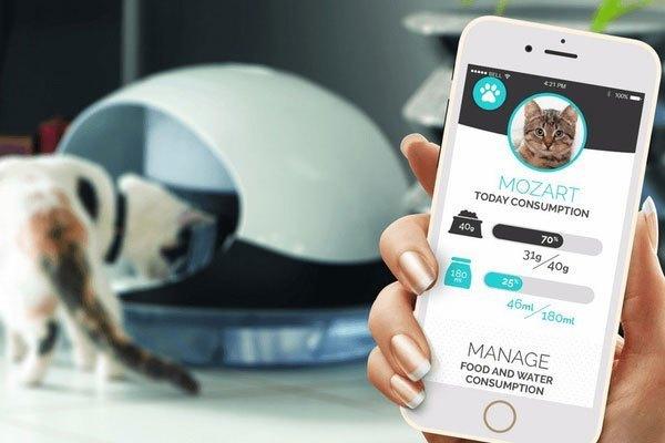 Người dùng sẽ điều khiển thiết bị thông qua ứng dụng trên điện thoại
