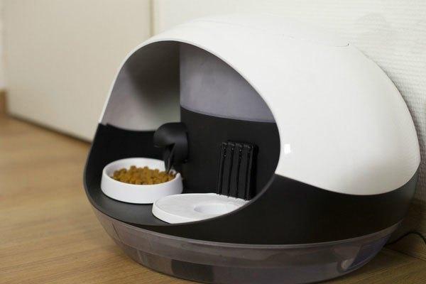 Thiết bị nuôi thú cưng thông qua điện thoại Catspad có khả năng chứa 2 kg thức ăn khô và 8 lít nước, đủ giúp 1 chú mèo sống 1 tháng