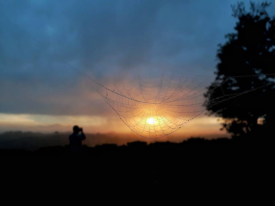 Bắt trọn khoảnh khắc yên bình của Bảo Lộc qua lăng kính 13MP cùng khẩu độ F/1.9 - Thách thức bóng tối của chiếc điện thoại Galaxy J7 Prime.