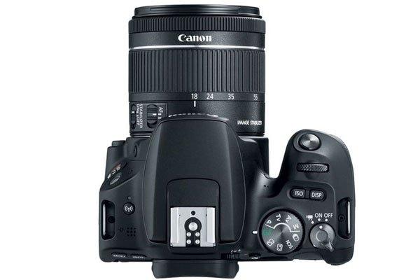 Nếu bạn mới bắt đầu với nhiếp ảnh, máy ảnh Canon Rebel SL2 là lựa chọn vô cùng hoàn hảo
