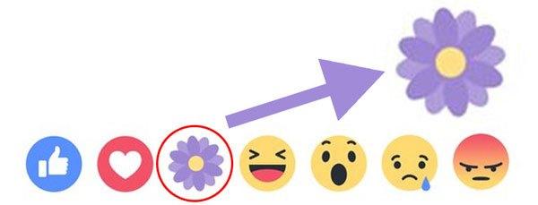 """Facebook đã chuẩn bị nút """"Biết ơn"""" bằng bông hoa màu tím rồi đấy!"""