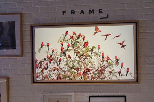 Chiếc tivi The Frame sở hữu màn hình LED, độ phân giải 4K