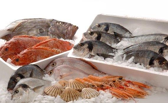 Tủ đông Sanaky VH-5699W1 bảo quản thực phẩm tươi ngon lâu dài
