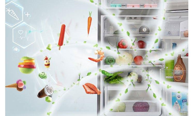Tủ lạnh Electrolux EBB3500PA-RVN khử mùi hôi hiệu quả