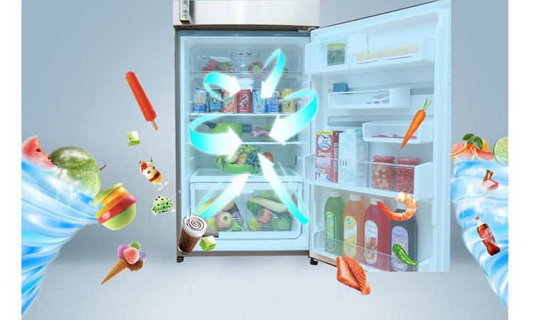 Tủ lạnh Electrolux ETE3500SE-RVN duy trì nhiệt độ lạnh đều khắp các ngăn