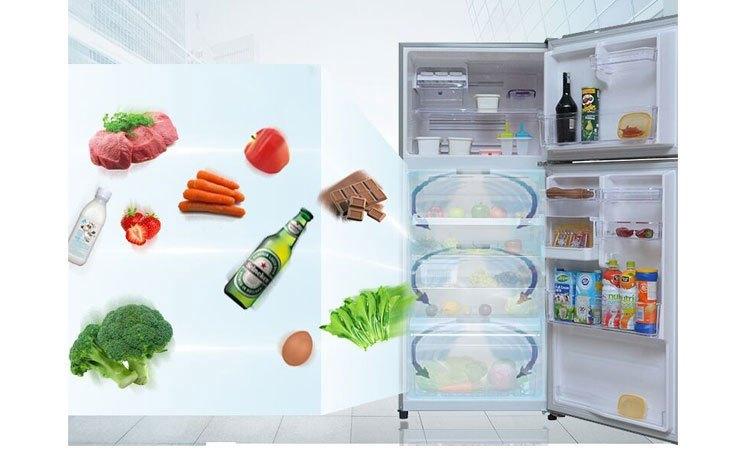 Tủ lạnh Toshiba GR-T41VUBZ (N1) bảo quản thực phẩm tươi ngon lâu hơn
