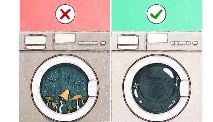 Để tránh tình trạng nấm mốc, hãy thường xuyên kiểm tra miếng đệm cao su ở cửa máy giặt cửa trước. Ngoài ra, bạn cũng nên vệ sinh các hộp đựng chất tẩy rửa và phơi khô sau mỗi lần dùng.