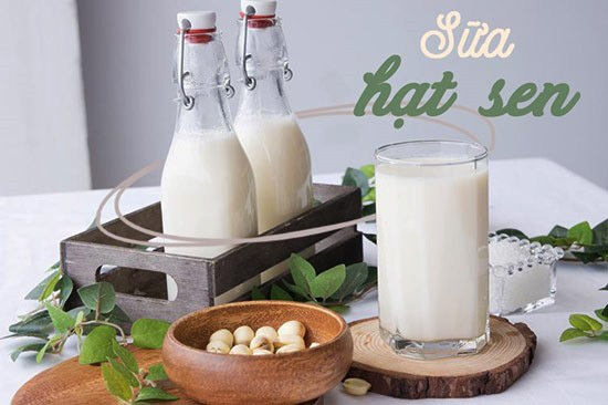 Cách làm sữa hạt sen, sữa tươi, sữa đặc