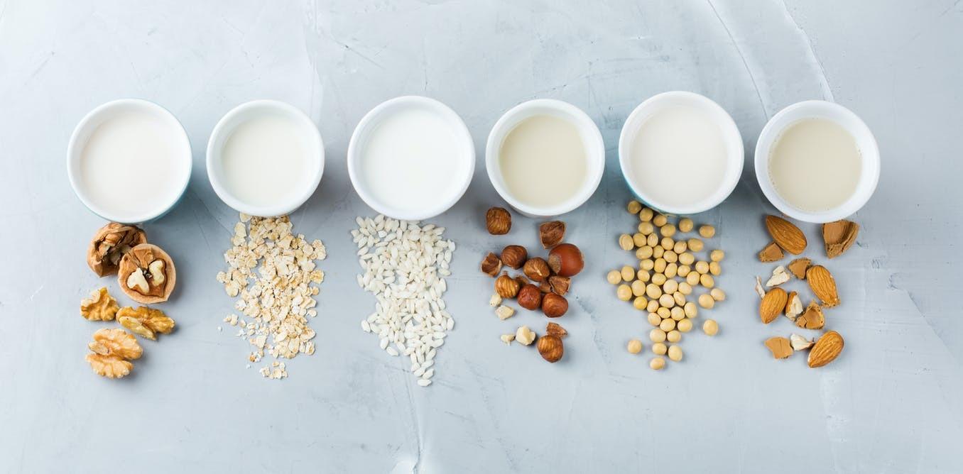 Sữa hạt yến mạch, hạt óc chó, hạnh nhân, đậu nành, hạt dẻ, lúa mạch