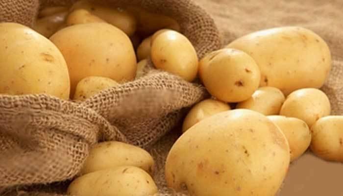 Khoai tây bỏ vào tủ lạnh sẽ chuyển hóa đường có trong chúng thành các chất gây hại