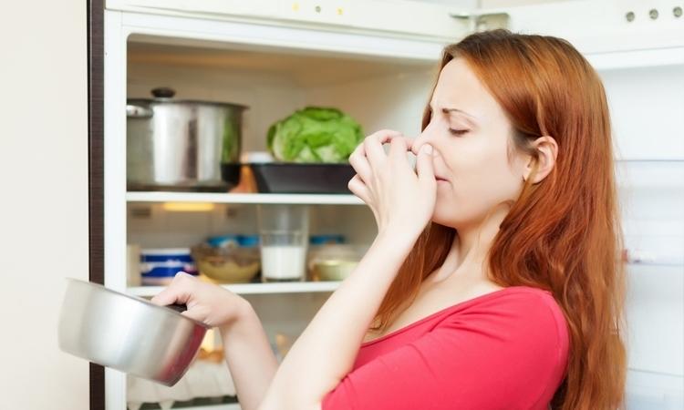Phải làm sao khi tủ lạnh có mùi hôi khó chịu