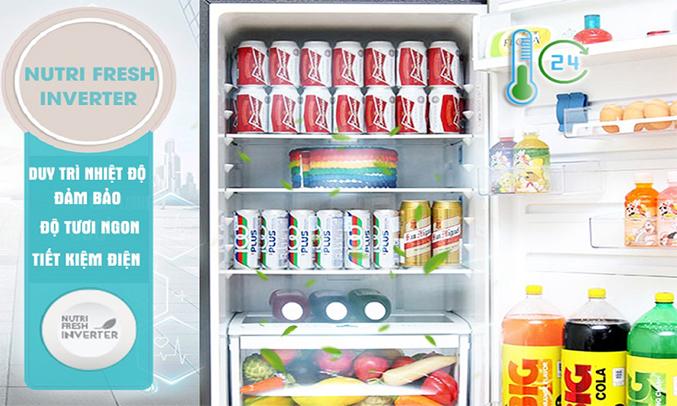 Tủ lạnh Electrolux 453 lít EBE4502GA công nghệ inverter