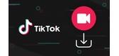 5 Cách Chuyển Video TikTok Sang MP4 Online Không Có Logo