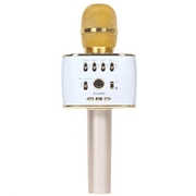 Micro karaoke Icore IC-M9