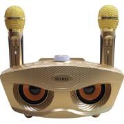 Loa Bluetooth Karaoke SD306 SDRD