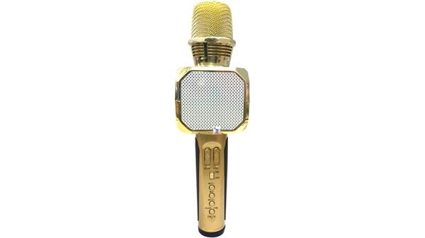 mic-karaoke-sd10-sdhd