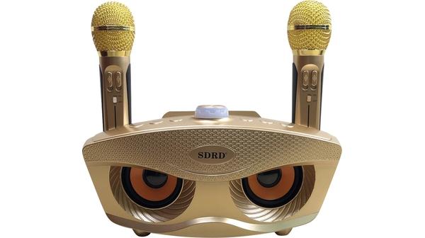 loa-karaoke-sd306-sdrd-1