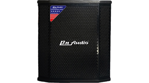 Loa sub BN Audio SW1 mặt chính diện