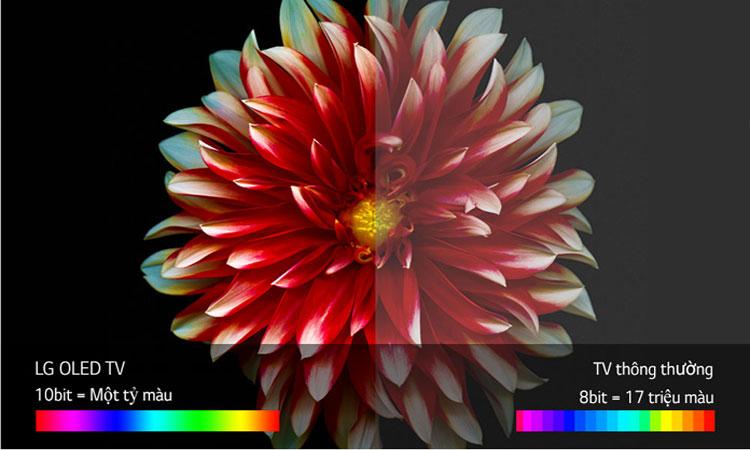 Thưởng thức hình ảnh đầy màu sắc cùng tivi OLED 4K LG 65 inch 65C7T